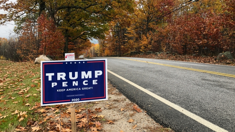 A Trump lawn sign by the roadside in New Hampshire.